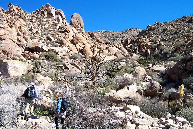 A short way up the canyon.