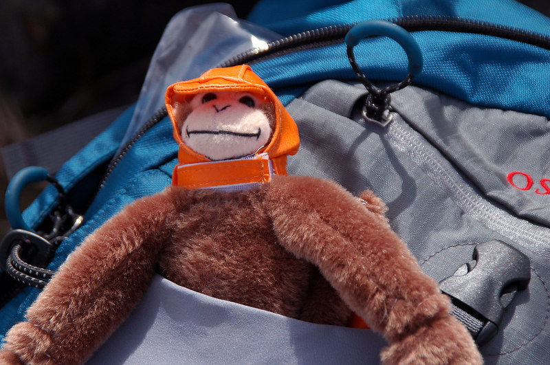 Sooz's monkey is ready for the hike.