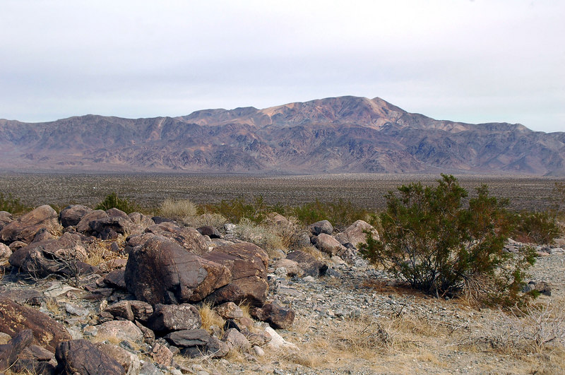 Looking back across the Pinto Basin to Pinto Peak.