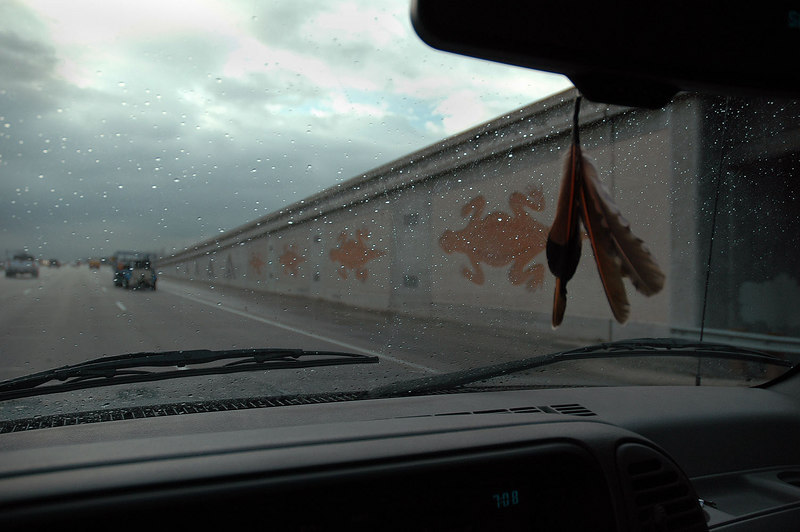 The lizards on the onramp near Indio.