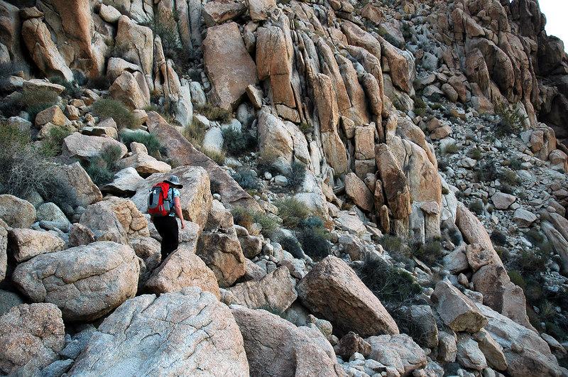 Back on the rocks.
