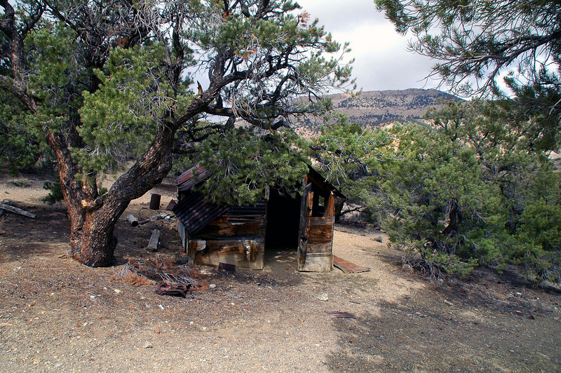 Passed by this old cabin on a saddle on the way to the starting point of the hike.