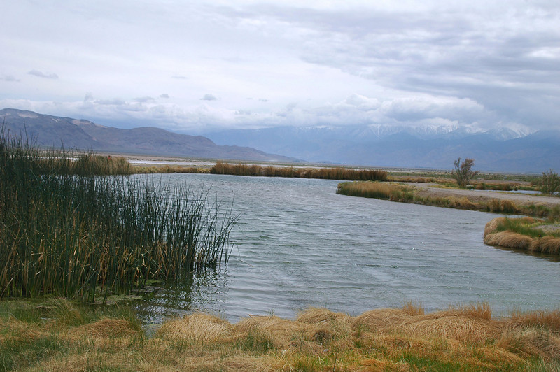 We were surprised to find a hot spring and two large ponds in the middle of nowhere. This area is called The Crossing where four dirt roads meet up.