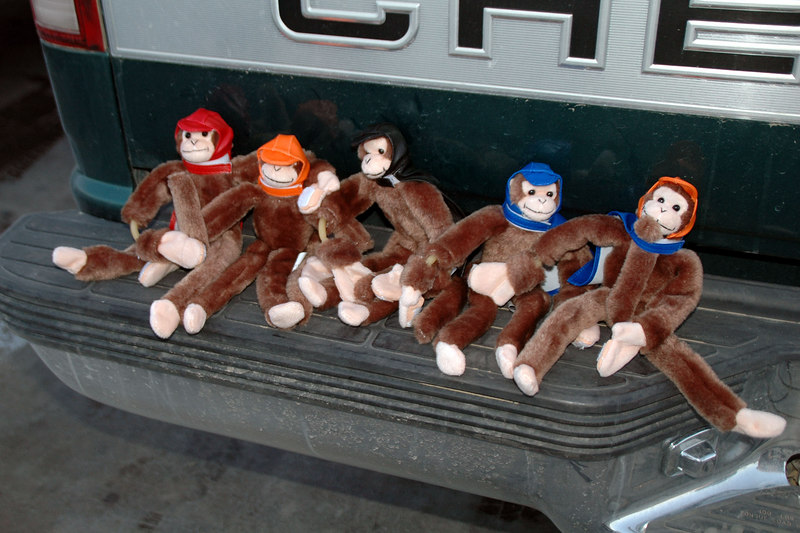 After the hike, we all drove to Kramer Junction and got monkeys of our own.