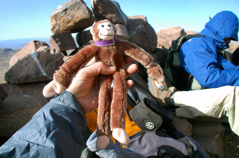The monkey kept us entertained on the hike.