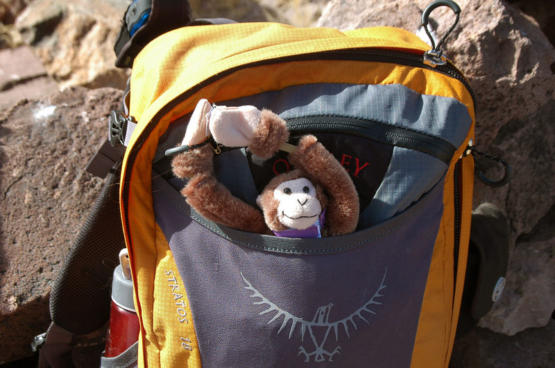 After taking a flight off the windy peak, he was recovered safely and was ready for the hike down.