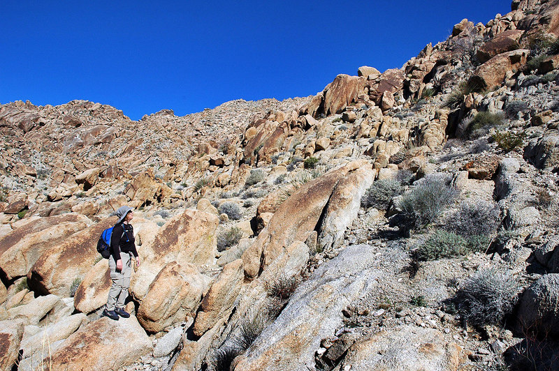 Kathy looking up the slope we are about to climb to get to a ridge. At this point Ken and Shasta took another route. We didn't see them again untill we where on the way out
