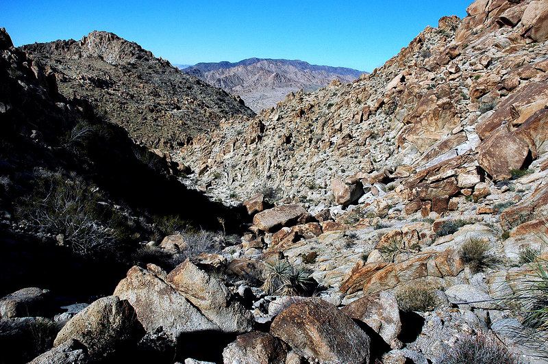 Another view down the canyon from further up.