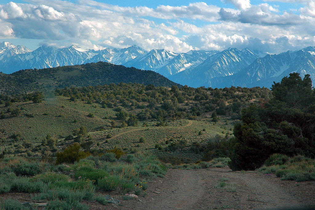 The Sierra Mountains come into view as I reached the top of a set of tight switchbacks. Just before this spot there was a sign showing that Papoose Flat was in this direction.