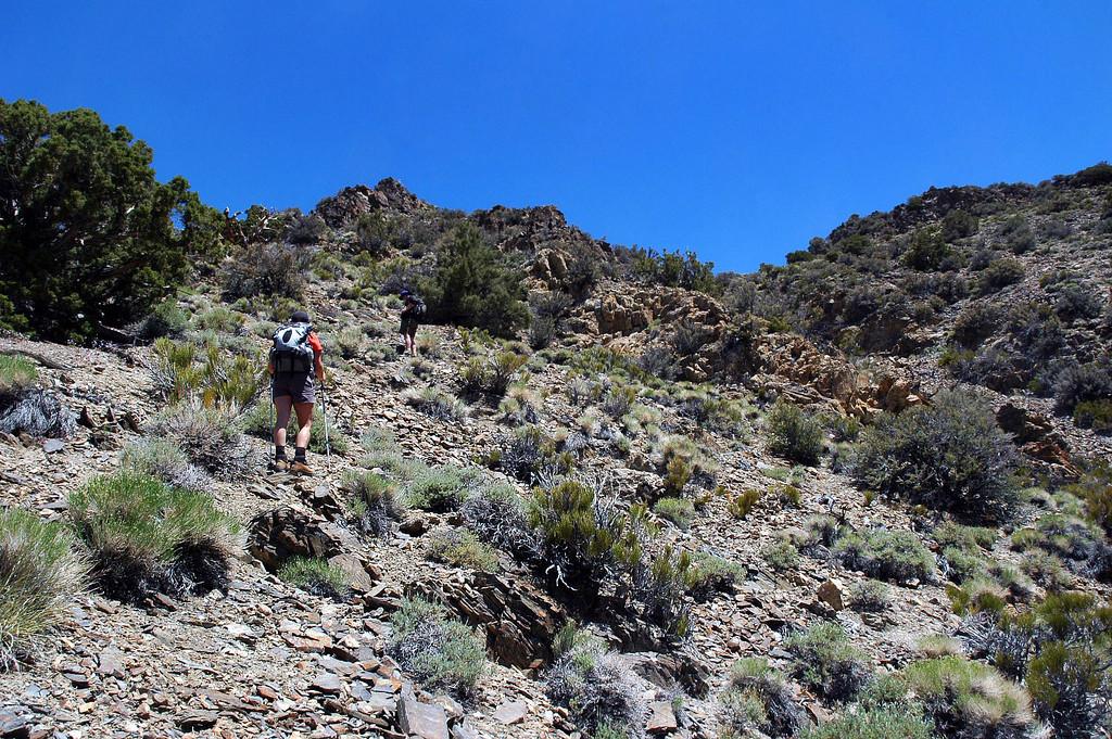 Still on the steep stuff heading for the main ridge.