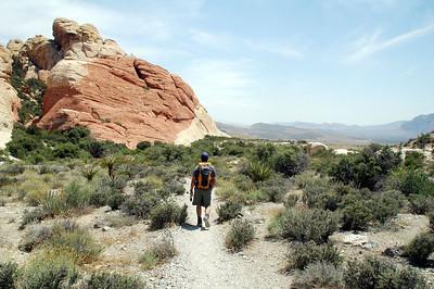 Tutlehead Mountain, Nevada 5/22/09