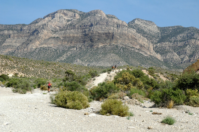 The first section of this hike followed a wash, at this point we left the wash and started to gain some altitude.