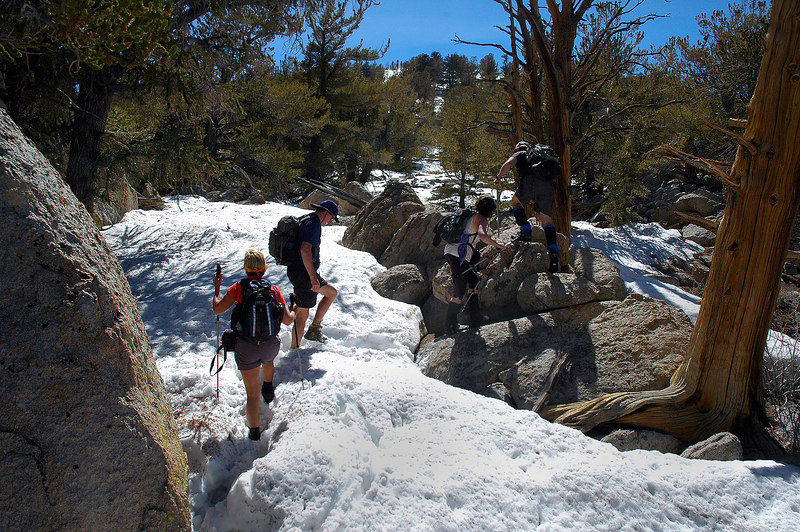 The last 300' of altitude was on snow.