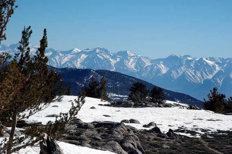 The Sierras in back with the Inyos in front of them.