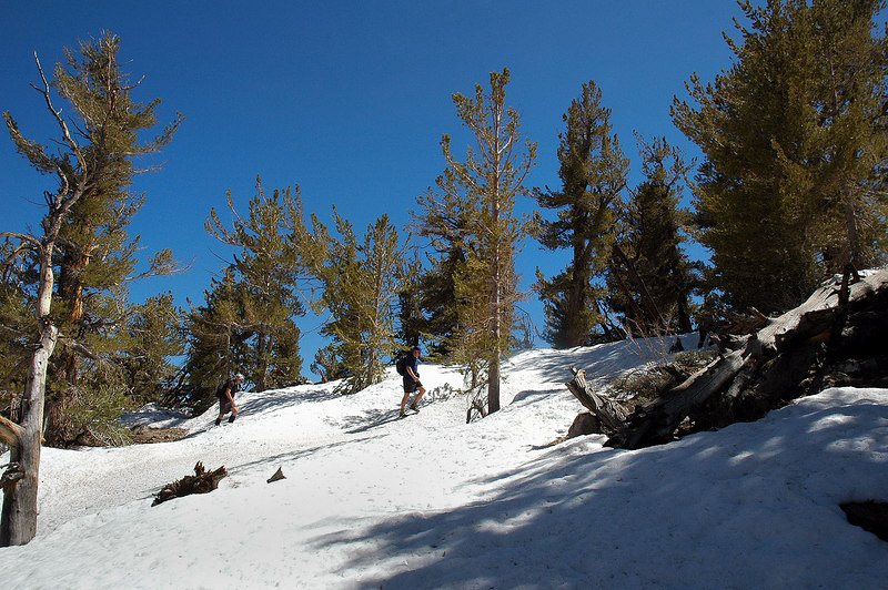 John and Scot ahead. There were no other people tracks on the whole hike. The register on the summit showed the last group to climb this peak was in October, about 7 months before.
