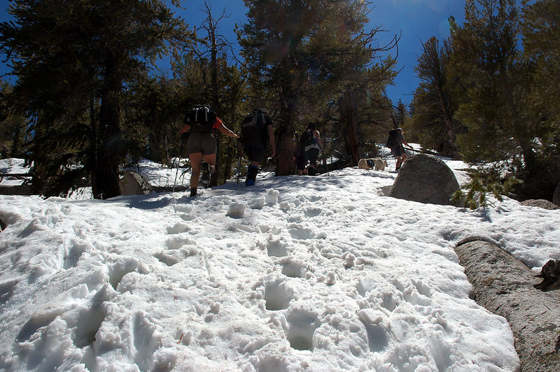 At about the 10,000' level we came upon large areas of soft deep snow.