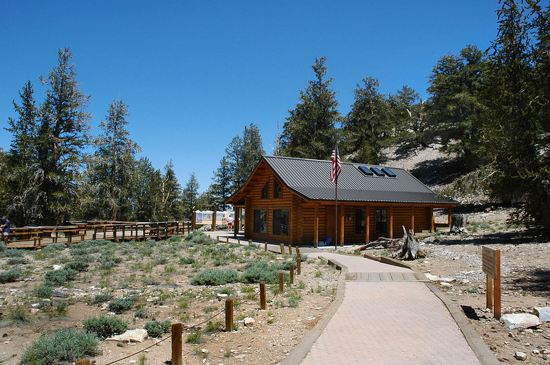 The Bristlecone Pine Forest Visitor Center at 10,000'.  After setting up camp at Grandview Campground, we drove up to check out the Bristlecones.