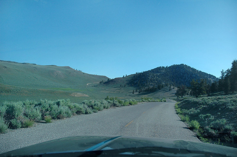 Driving up the White Mountain Road to the trailhead. It's paved to 10,000', then dirt for the last 16 miles.
