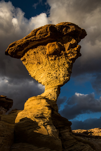 Twisted Hoodoo
