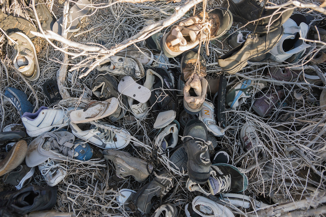 Shoes tumbled to the base of the fallen Shoe Tree.