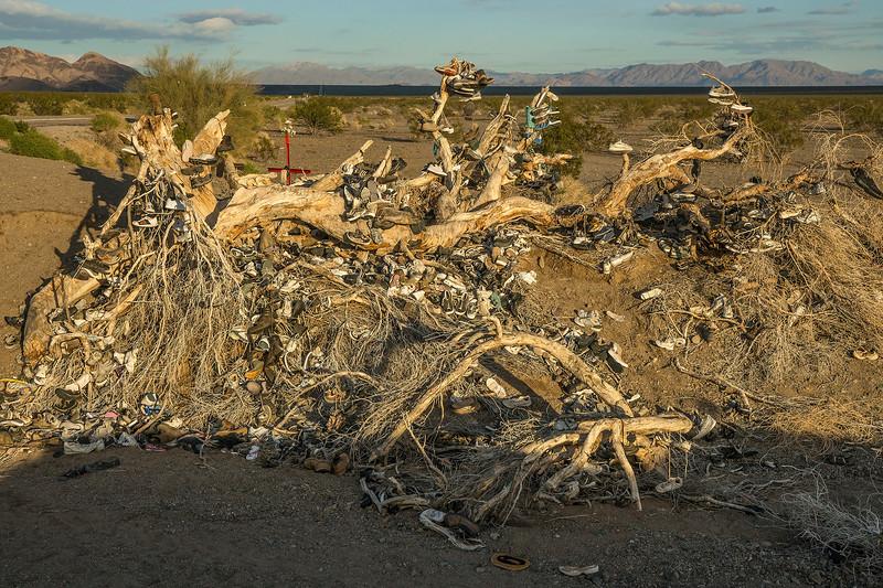 RIP:  The Amboy Shoe Tree.
