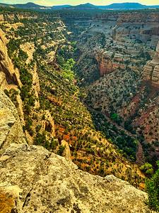 Deep Colorado Canyon