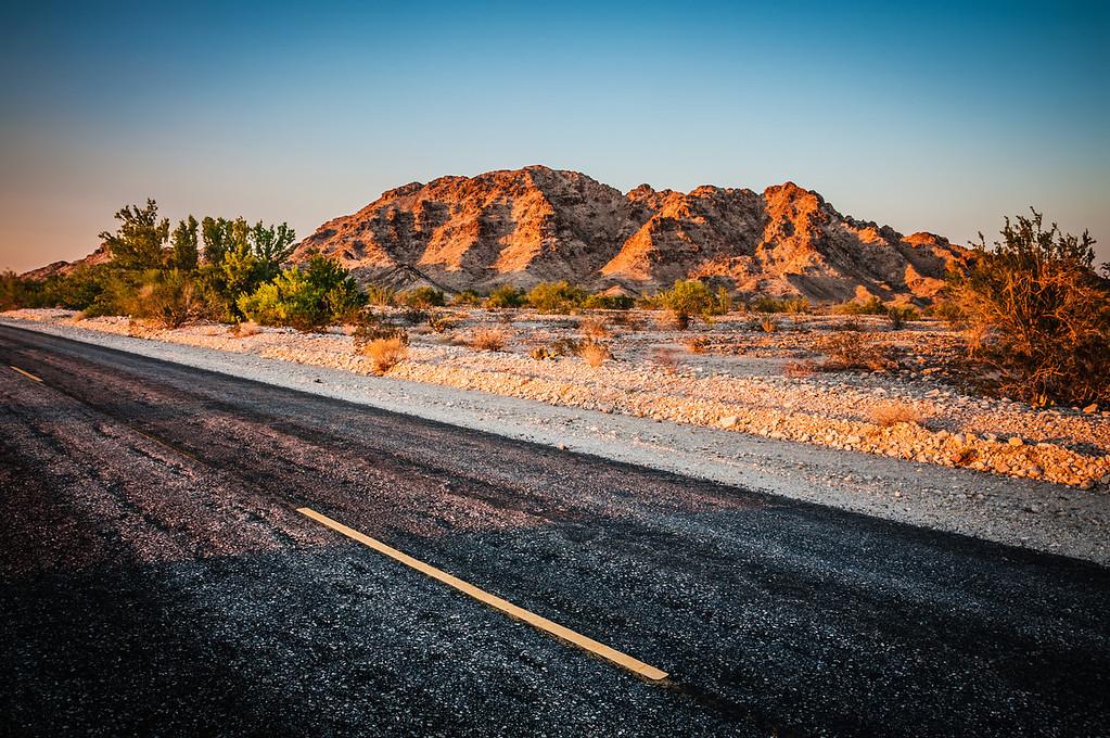 Desert Roadside