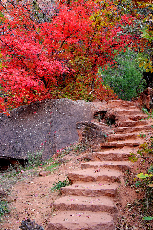 Steps to Nowhere Zion National Park Utah