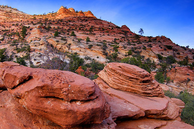 Rock Formations at Sunset Zion National Park Utah