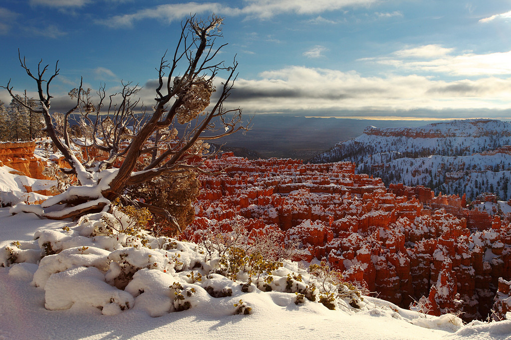 Rim Trail in Winter Bryce Canyon National Park Utah