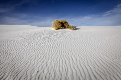 Dune Ripples, White Sands National Park