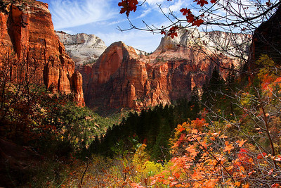 Afternoon, Zion Canyon Zion National Park Utah