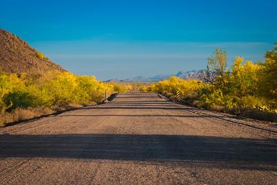 Arizona's Deserts