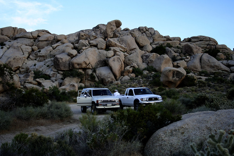 """Our campsite at Granite Pass<br /> <br /> Our first day was spend driving from LA to Granite Pass, which is off Highway 40, north on Kelbaker Rd. (add link to maps and Google Earth Here...). Beautiful granite formations reminiscent of Joshua Tree, high-desert cactus abound. Still too low for a significant number of Joshua trees however, except at the absolute highest part of the pass.<br /> <br /> There are a very nice set of camp sites a mile or two off the """"main"""" road which are accessible by 2WD if you are careful. Boring driving if you have 4WD. I have no idea how popular they are, there was one other car there when we camped in mid-June, which is well after the normal spring wildflower rush.<br /> <br /> It is a fairly high altitude (~4500 ft) location, which is cooler in spring and summer, but can be quite cold (I've been snowed on before) in the winter. It can be quite windy in the winter and spring (Kelso Dunes are only a few miles away), when there are significant pressure gradients."""