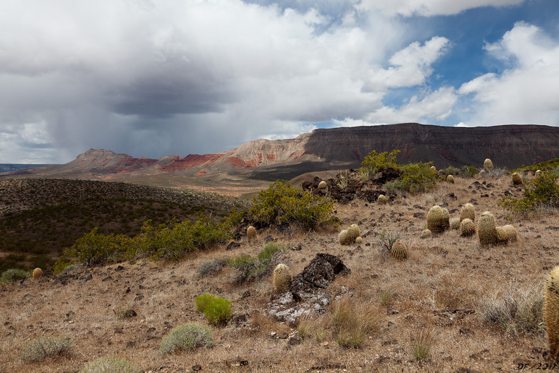 In Whitmore canyon, heading for the overlook. This view is looking back at Whitmore point