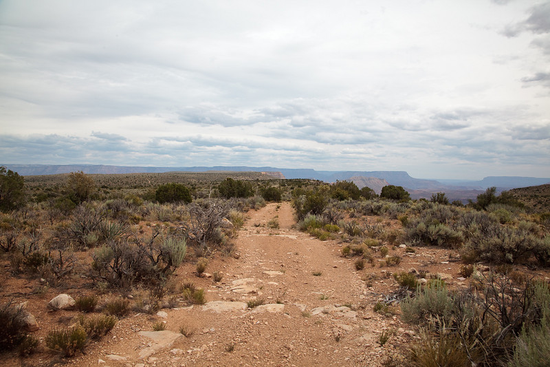 The road to Whitmore Point<br /> <br /> We are up on the plateau above Parashant Canyon. Whitmore point is one of the most isolated places in Grand Canyon, and one of the most spectacular views.