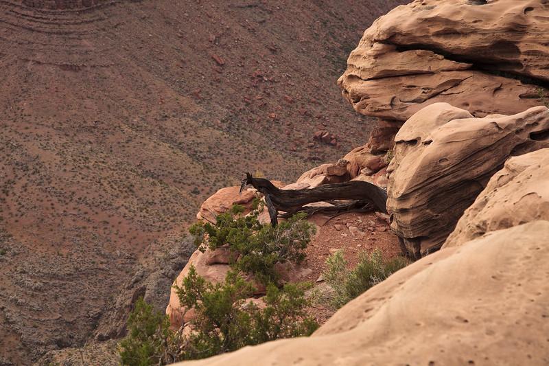 A ledge and a leap