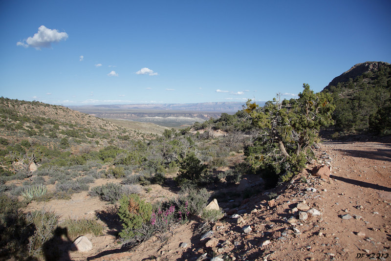 The view to the east from Lime Kiln Pass.<br /> <br /> Barely visible in the distance are Hidden Canyon on the horizon and Kelly Point peninsula on the right horizon.