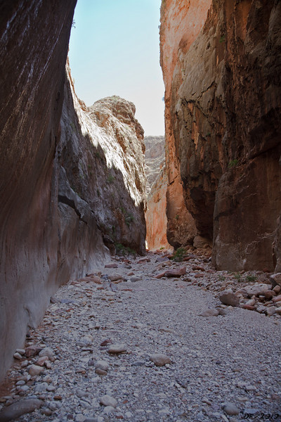 The view up Parashant Canyon