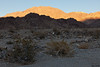 "Last light at ""Kit fox Camp"""