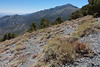 First view of Telescope Peak