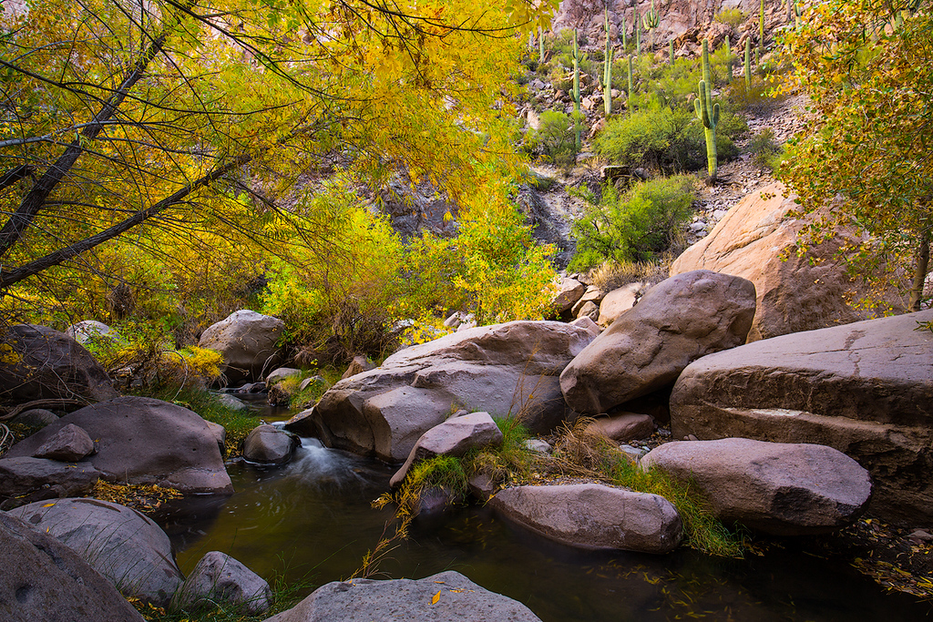 Pinal Creek, Salt River Canyon Wilderness