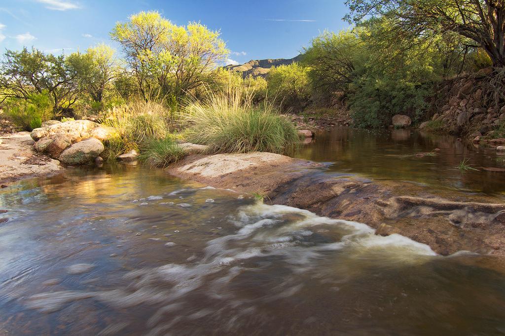 First Water Creek, Superstition Wilderness