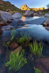 Seasonal Water, Boulder Canyon, Superstition Wilderness