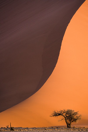 Beautiful dunes in Sossusvlei, Namibia, captured with a telephoto lens at sunset.