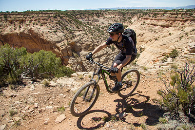 Mountain Biker Harrison