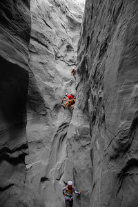 Climbing Down Colorful