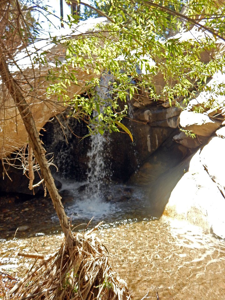 waterfall in the oasis