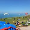 Hang Gliders at Tory Pines