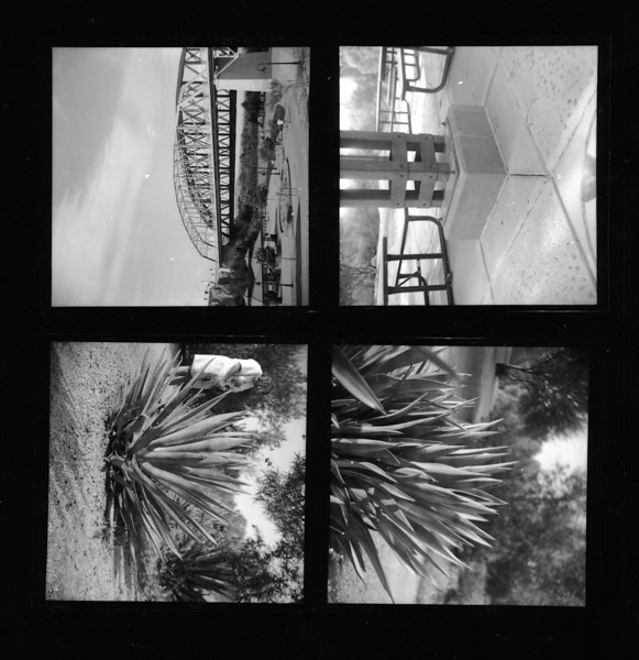 First four shots from the roll.  The plants were at the west wetlands as as the pavilion support.  Then down to the new gateway park to check out the Ocean to Ocean Bridge.  For the support I tried to expose for the concrete at the base - it still came out a bit lighter than I had wanted it to - but close.  The other three I it was basically just a quick metering to confirm Sunny f/16 made sense.
